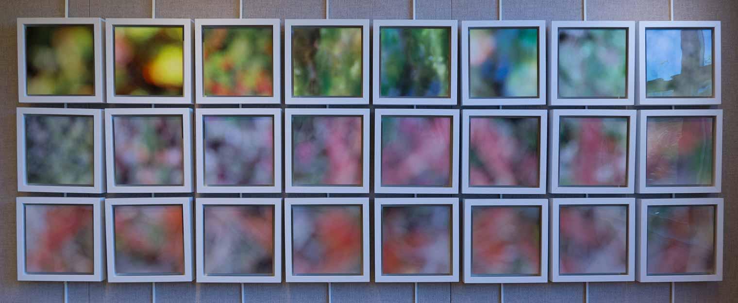 Moss -24 panels - 8x8
