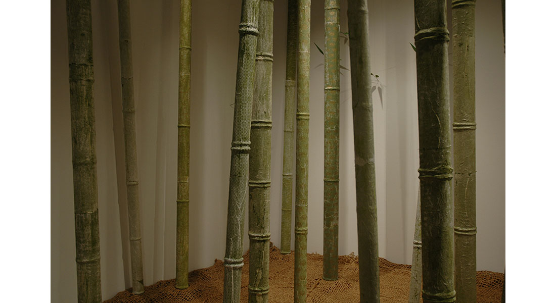 Bamboo-04
