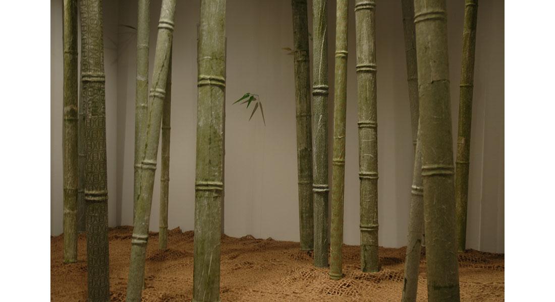 Bamboo-07