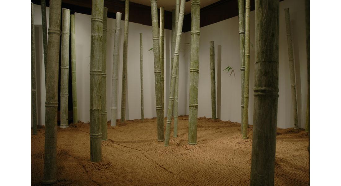 Bamboo-09