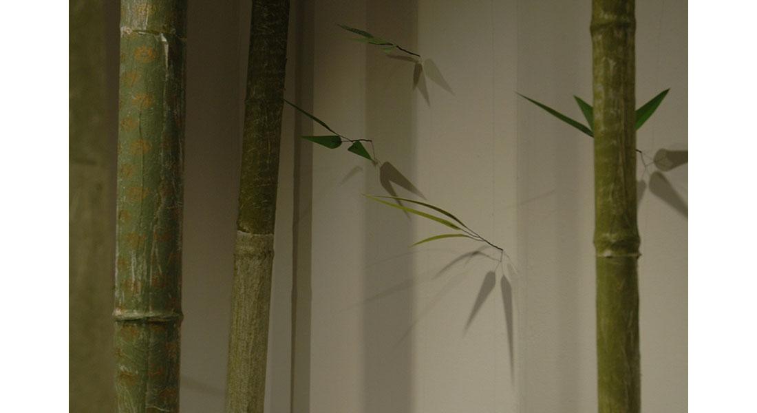 Bamboo-10