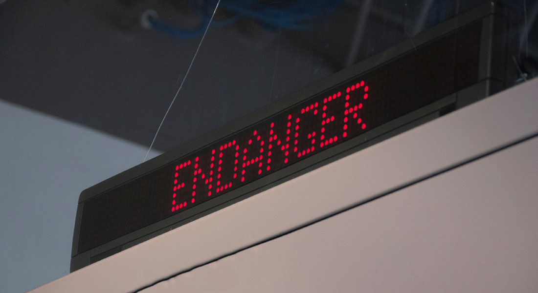InDanger-39