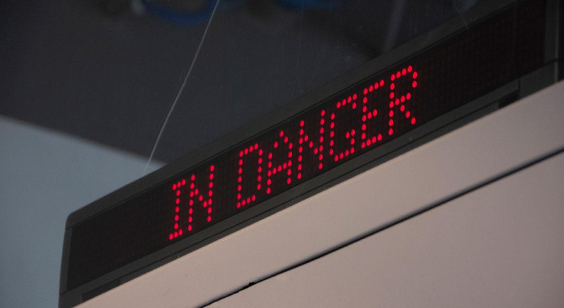 InDanger-41